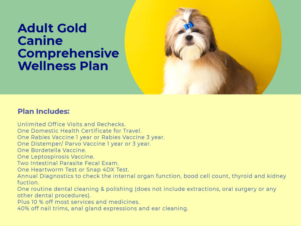 Adult Dog GOLD Comprehensive Wellness Plan at animal wellness clinic