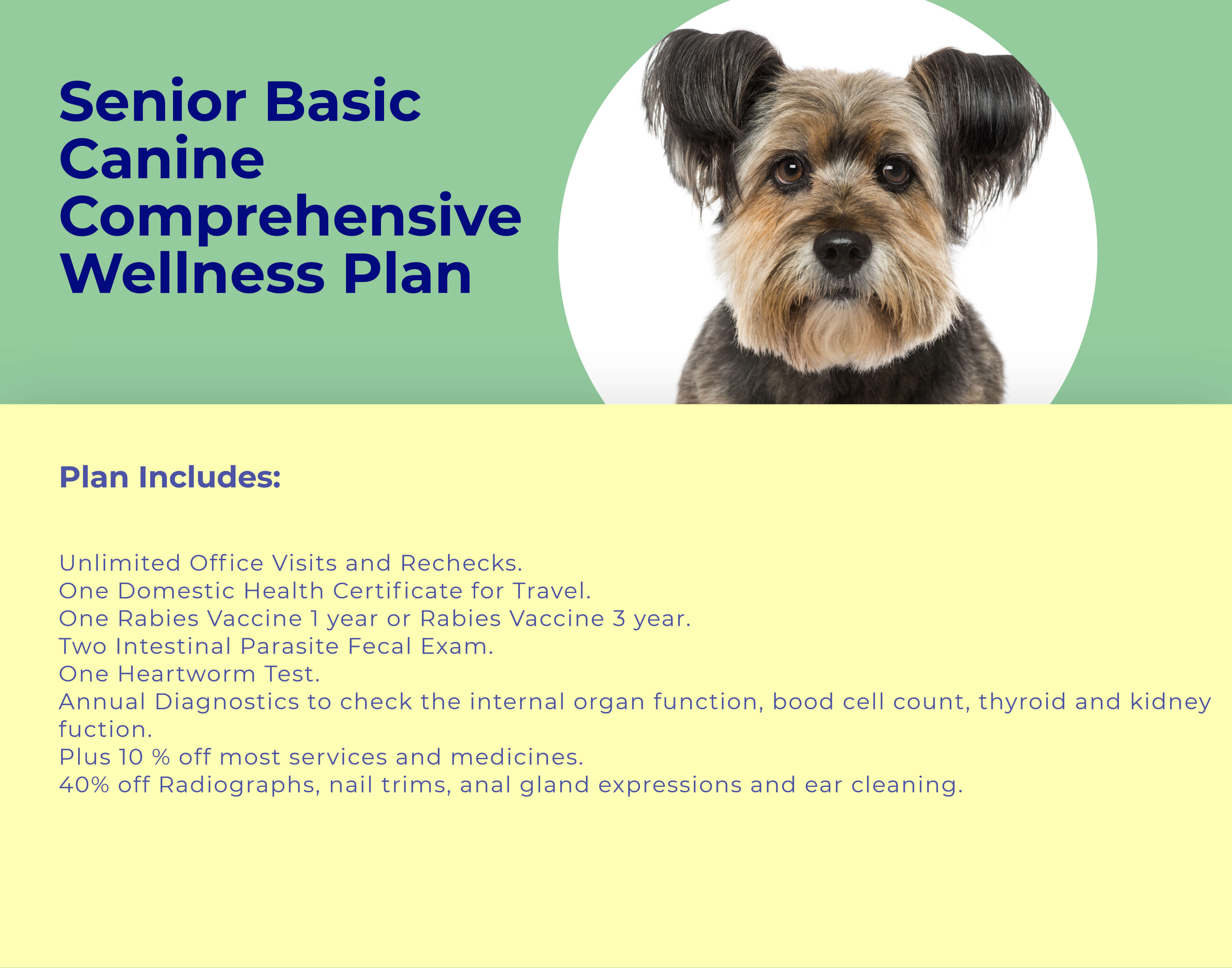 Senior Dog BASIC Comprehensive Wellness Plan at animal wellness clinic
